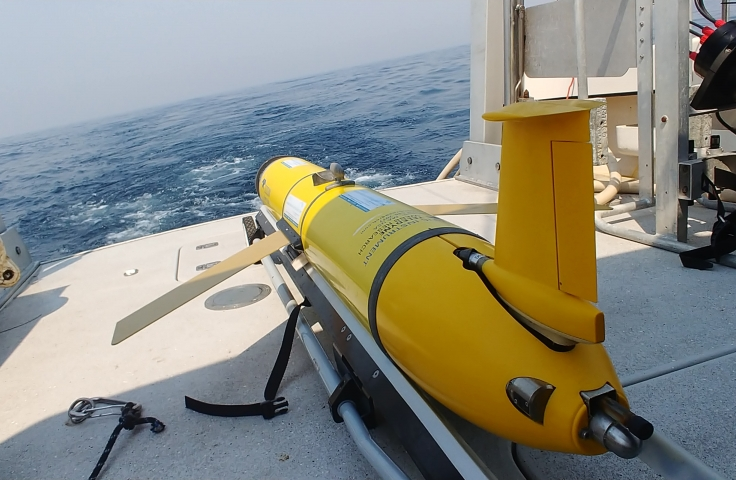 Monitoring and Predicting the marine environment from land, sea, and space